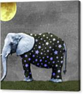 The Elephant And The Moon Canvas Print