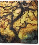 The Empty Tree Canvas Print