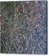 The Empyreal Deep Canvas Print