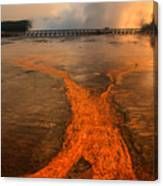 The Enchantment Of Grand Prismatic Spring Canvas Print