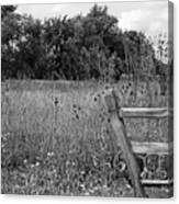 The End Of The Fence Bw Canvas Print
