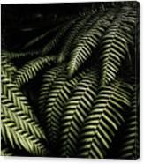 The Exotic Dark Jungle Canvas Print