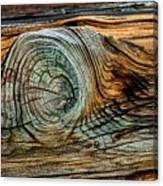 The Eye In The Wood Canvas Print