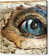 The Eye Of Nature 1 Canvas Print