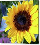 The Eye Of The Flower Canvas Print