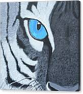 The Eye Of The Tiger Canvas Print
