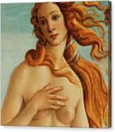 The Face Of Venus Canvas Print