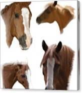 The Faces of T Canvas Print