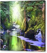 The Fairy Glen Gorge River Conwy Canvas Print