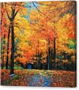 The Fall At Best Canvas Print