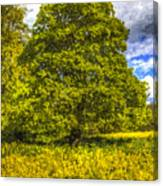 The Farm Tree Art Canvas Print