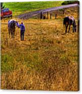 The Farmers Friend Canvas Print