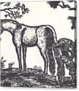 The Farrier Trims Geronimo Canvas Print