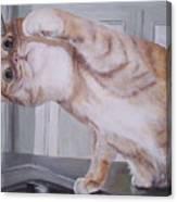 The Faucet Canvas Print