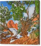 The Ferruginous Earth Of The Rocky Mountain West Canvas Print