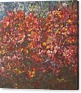 The Festival Canvas Print