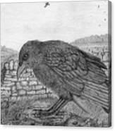 The Fledgling Canvas Print