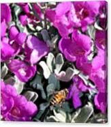 The Flight Of The Bumble Bee Canvas Print