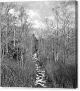 The Florida Trail Canvas Print
