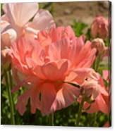 The Flower Field Season Canvas Print