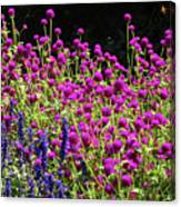 The Flowers And The Bees Canvas Print