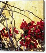 The Flowers Of Carmel 2 Canvas Print