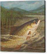 The Fly Fisherman's Net Canvas Print
