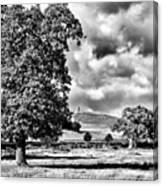 Old John Bradgate Park Canvas Print