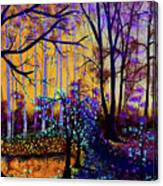 The Forest - Yellow Pond  Canvas Print