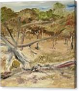 The Fourty-niner Highwaytrees Canvas Print