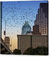 The Frost Bank Tower Stands Guard As 1.5 Million Mexican Free-tail Bats Overtake The Austin Skyline As They Exit The Congress Avenue Bridge Canvas Print