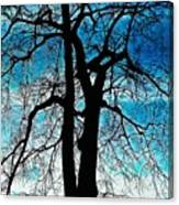 The Ghostly Tree Canvas Print