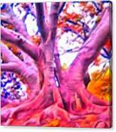 The Giving Tree 3 Canvas Print