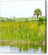 The Glades Canvas Print