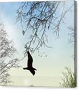 The Glider Canvas Print