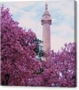 The Glory Of Spring In Mount Vernon Place, Baltimore Canvas Print