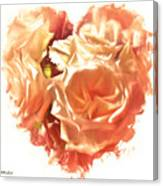 The Glow Of Roses Canvas Print
