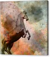 The Golden Horse Canvas Print