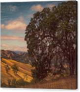 The Golden State Canvas Print