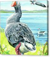 The Goose  Canvas Print