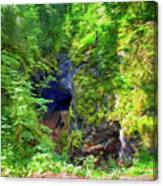 The Gorge In The Wood Canvas Print