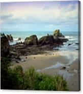 The Gorgeous Northwest Pacific Coastline Canvas Print