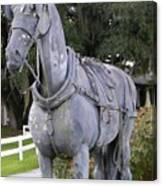 Horse At The Grand Oaks Resort Canvas Print