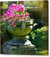 The Grecian Urn Canvas Print