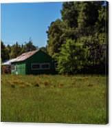 The Green Shack Canvas Print