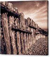 The Groynes At Porlock Weir In Sepia Tones. Canvas Print