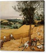 The Harvesters By Pieter Bruegel The Elder                             Canvas Print
