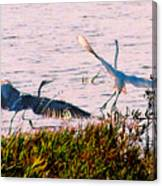 The Heron And The Egret Canvas Print