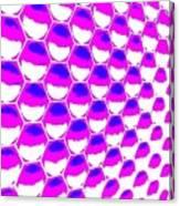 The Hexagon Canvas Print