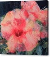 The Hibiscus Canvas Print